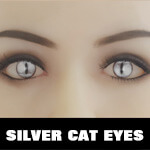 Silver Cat